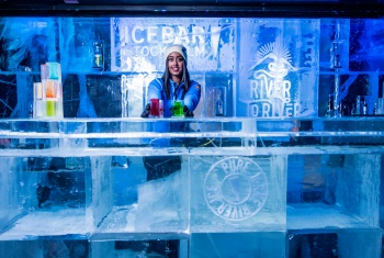 The Ice Bar and  Stockholm Panorama Tour